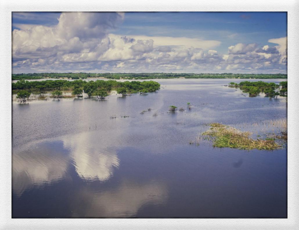 Schwimmen im Amazonas