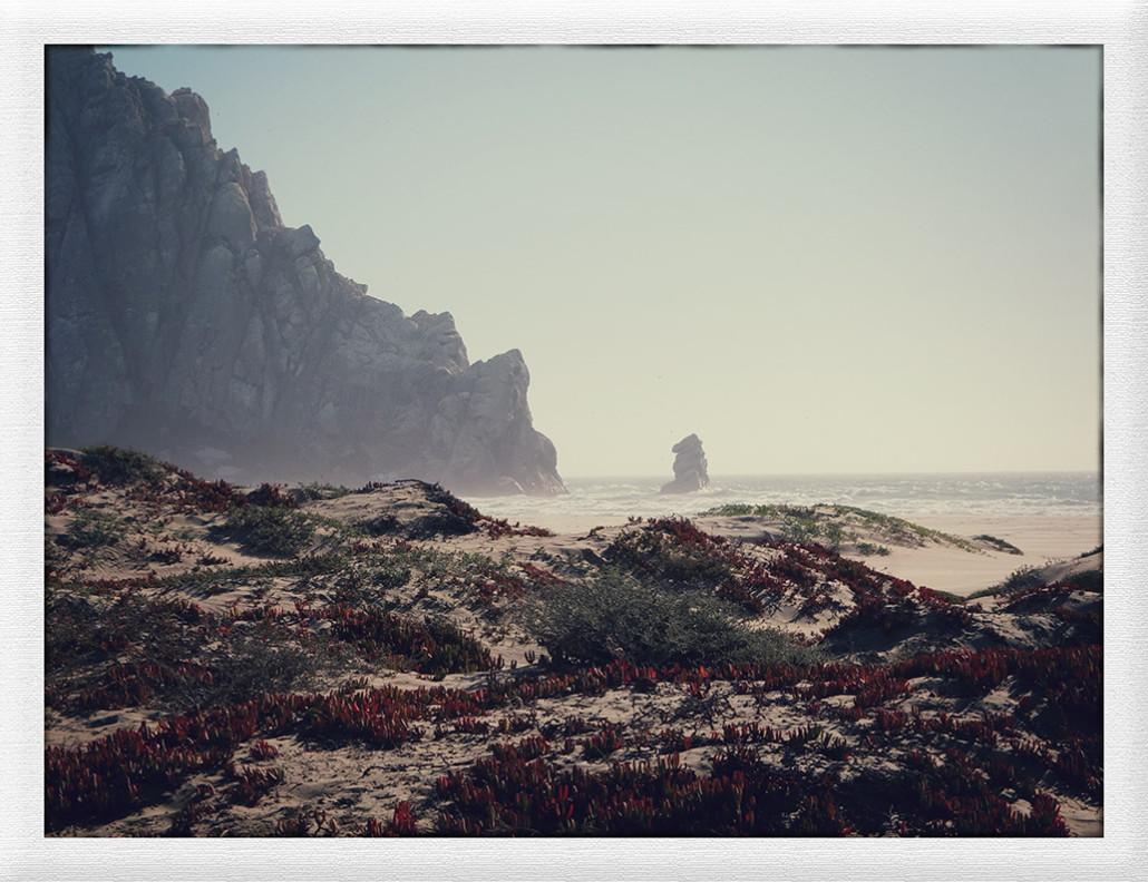 Zurück an der Küste